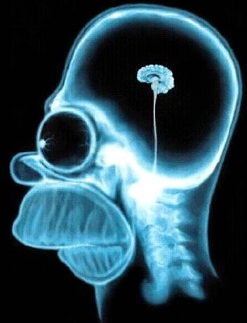 HomerSimpson_Brain_in_vat