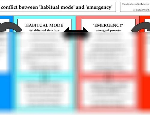 The Client's Conflict between 'Habitual Mode' and 'Emergency' (2015)